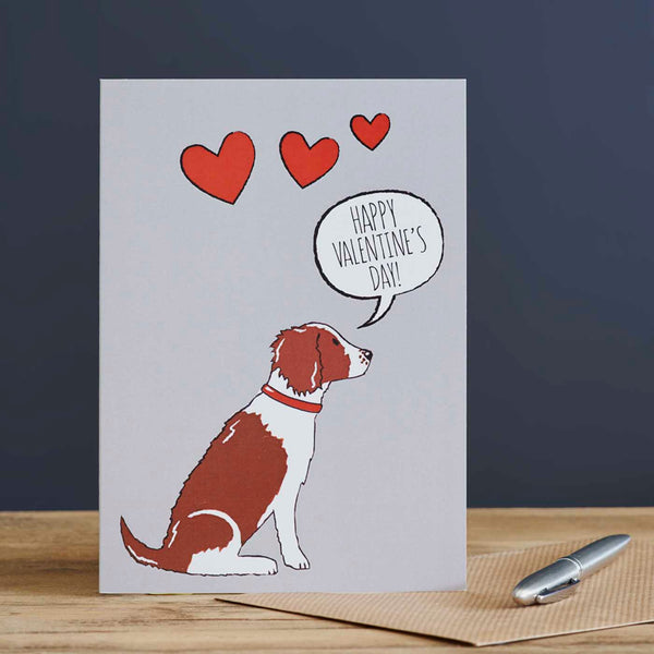 Springer Spaniel Valentine's Day Card
