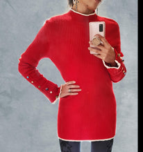 Load image into Gallery viewer, Turtle Neck Jersey
