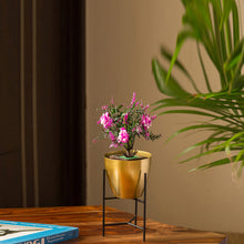 "Load image into Gallery viewer, ""The Golden Frustum"" Table & Floor Planter Pot With Triangular Stand In Iron"