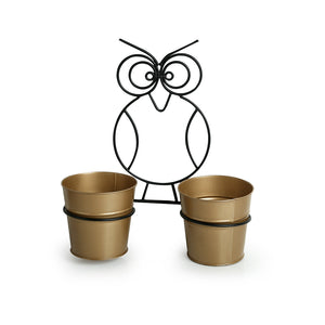 """The Owl Buckets"" Wall Planter Pots In Galvanized Iron (Set of 2)"