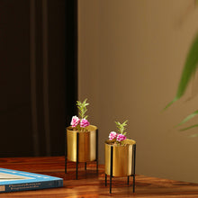 "Load image into Gallery viewer, ""The Golden Cylindrical"" Table & Floor Planter Pots With Crossed Stands In Iron (Set of 2)"
