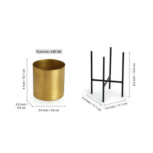 """The Golden Cylindrical"" Table & Floor Planter Pots With Crossed Stands In Iron (Set of 2)"