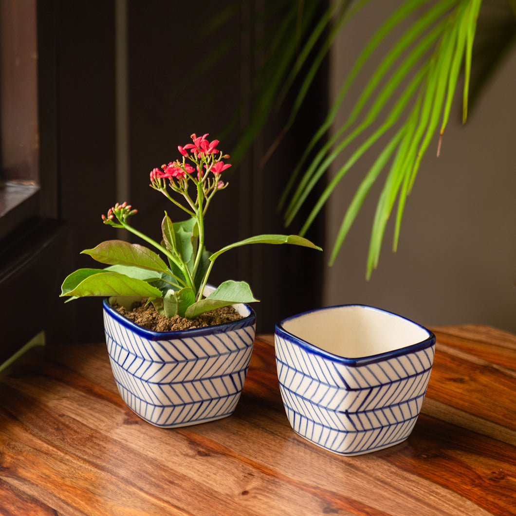 'Indigo Chevron Duo' Hand-painted Ceramic Cuboidal Table Planter Pots (3.7 Inch, Set of 2)