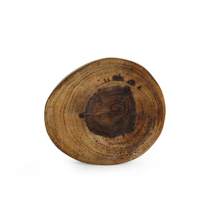 'Circles of Wood' Log Handcrafted Coasters (Set Of 6)