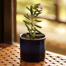 Load image into Gallery viewer, Dual Galzed Studio Pottery Garden & Balcony Planter Pot In Ceramic