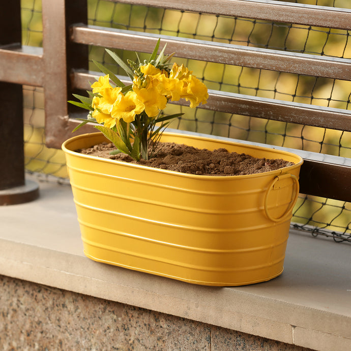 'Glossy Yellow' Hand-Painted Metal Floor Cum Table Planter Pot