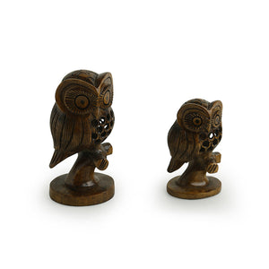'The Resting Owl Pair' Hand Carved & Hand Painted Showpiece In Cedar Wood