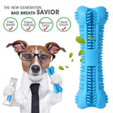 Pets Oral Care Dog Brushing Stick