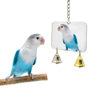 Parrot Mirror with Bells | Fun Bird Toys