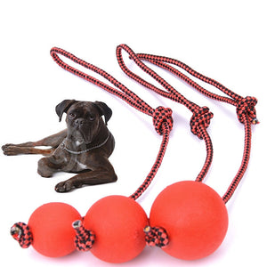 New Indestructible Chewing Balls for Dogs