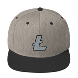 Litecoin Structured High Profile Snapback Hat