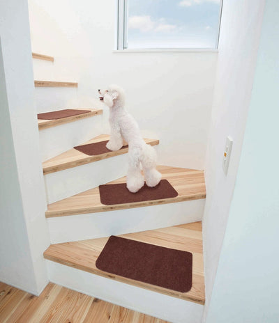 Photo of WATANABE Industry Absorption Sticky-Base Mat / Carpet  For Staircase