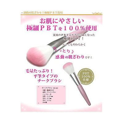 Cheek Brush Make-Up Cosmetics Blusher Use (Us-02)
