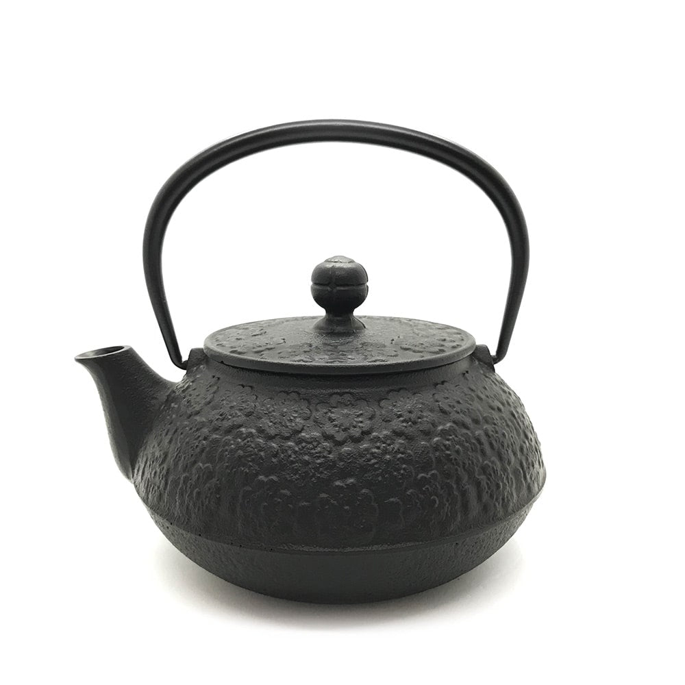 direct flame Japanese cast iron teapot kettle made in japan