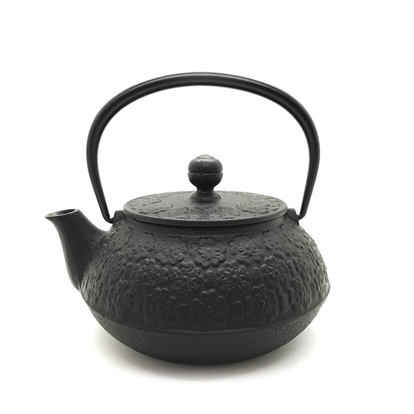 direct flame cast iron teapot kettle made in japan