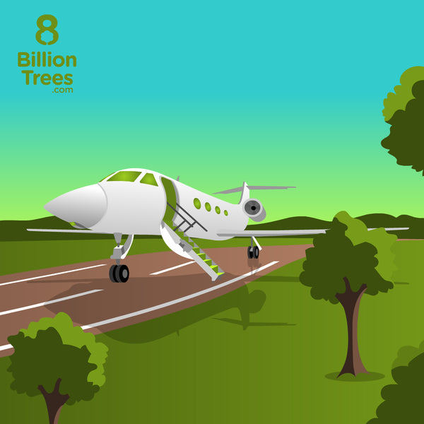 Private Jet: Carbon Offsets