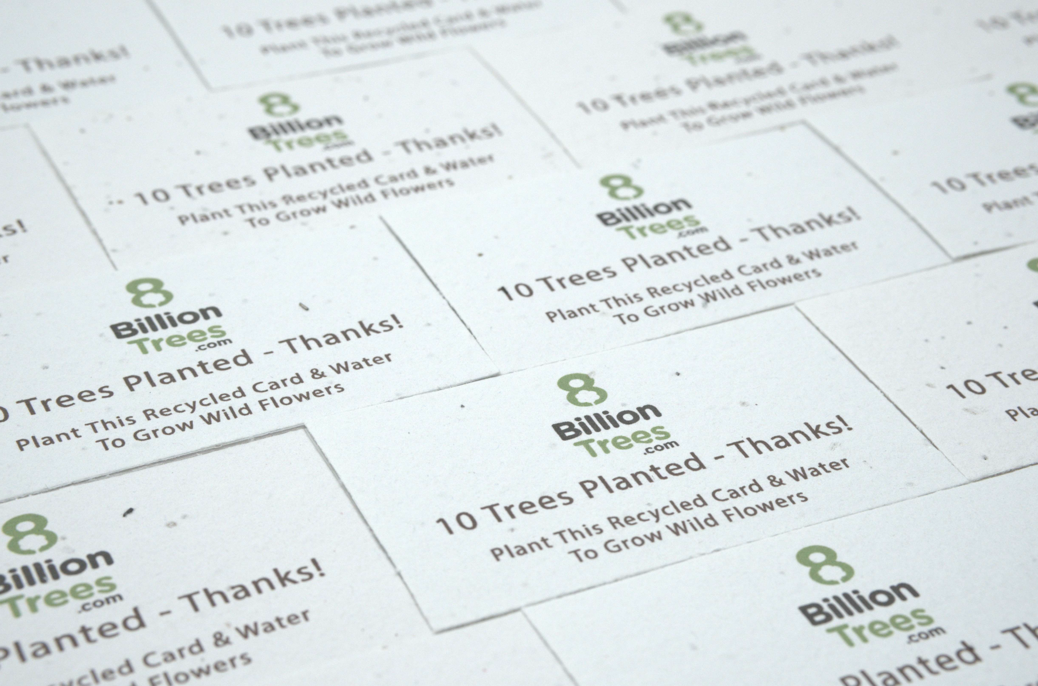Plantable Tree Card Set