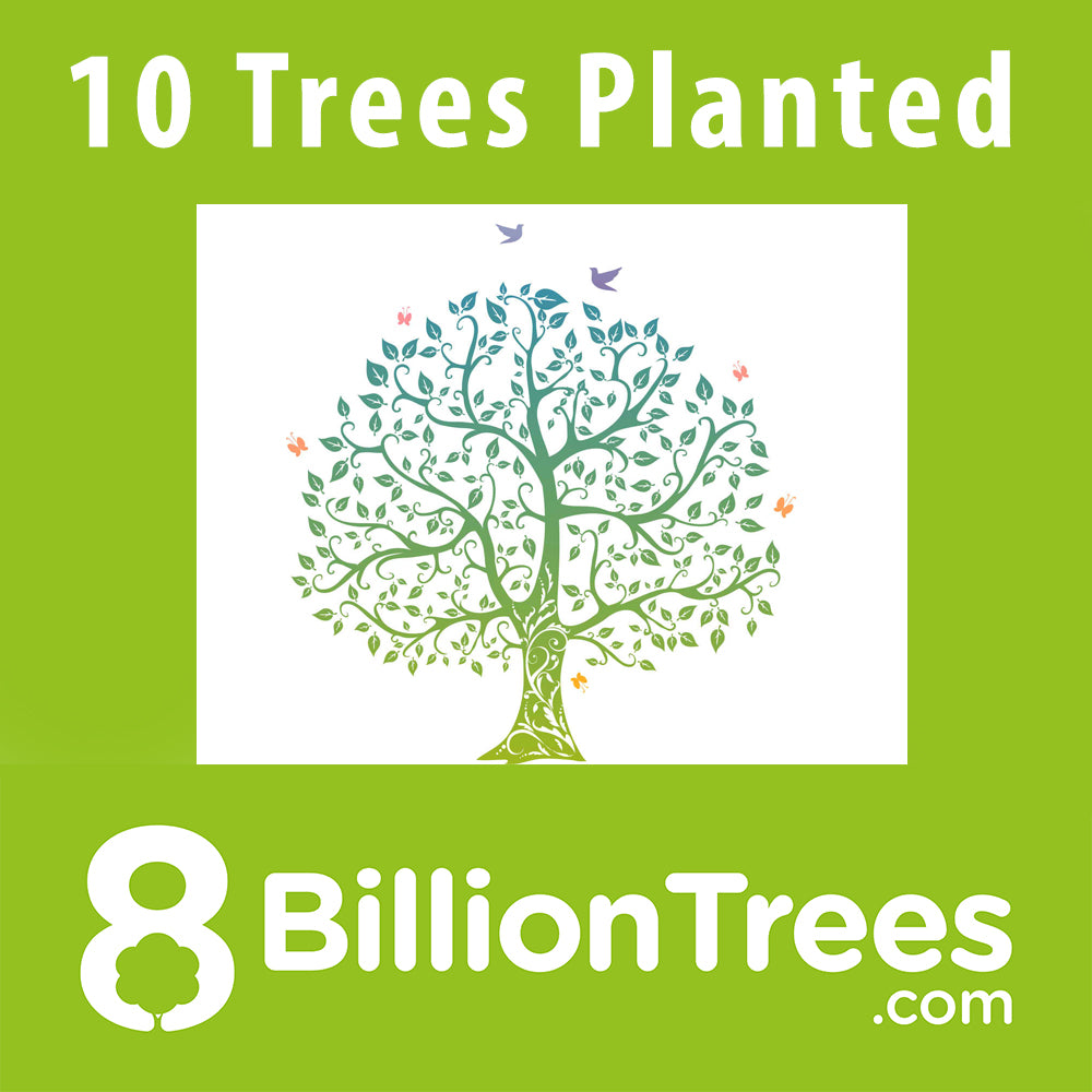 8 Billion Trees Sticker - Conserve 100 Trees, Plant 10 More