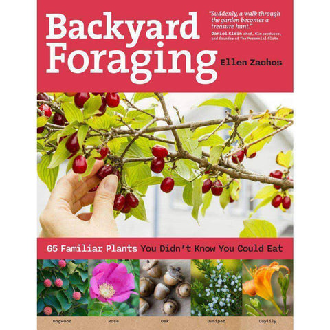 Backyard Foraging: 65 Familiar Plants You Didn't Know You Could Eat - Camping Survival