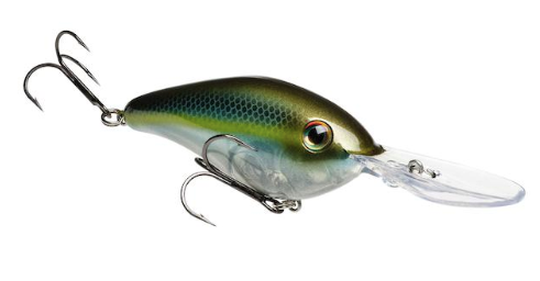 Strike King Pro Model 6XD Crankbait