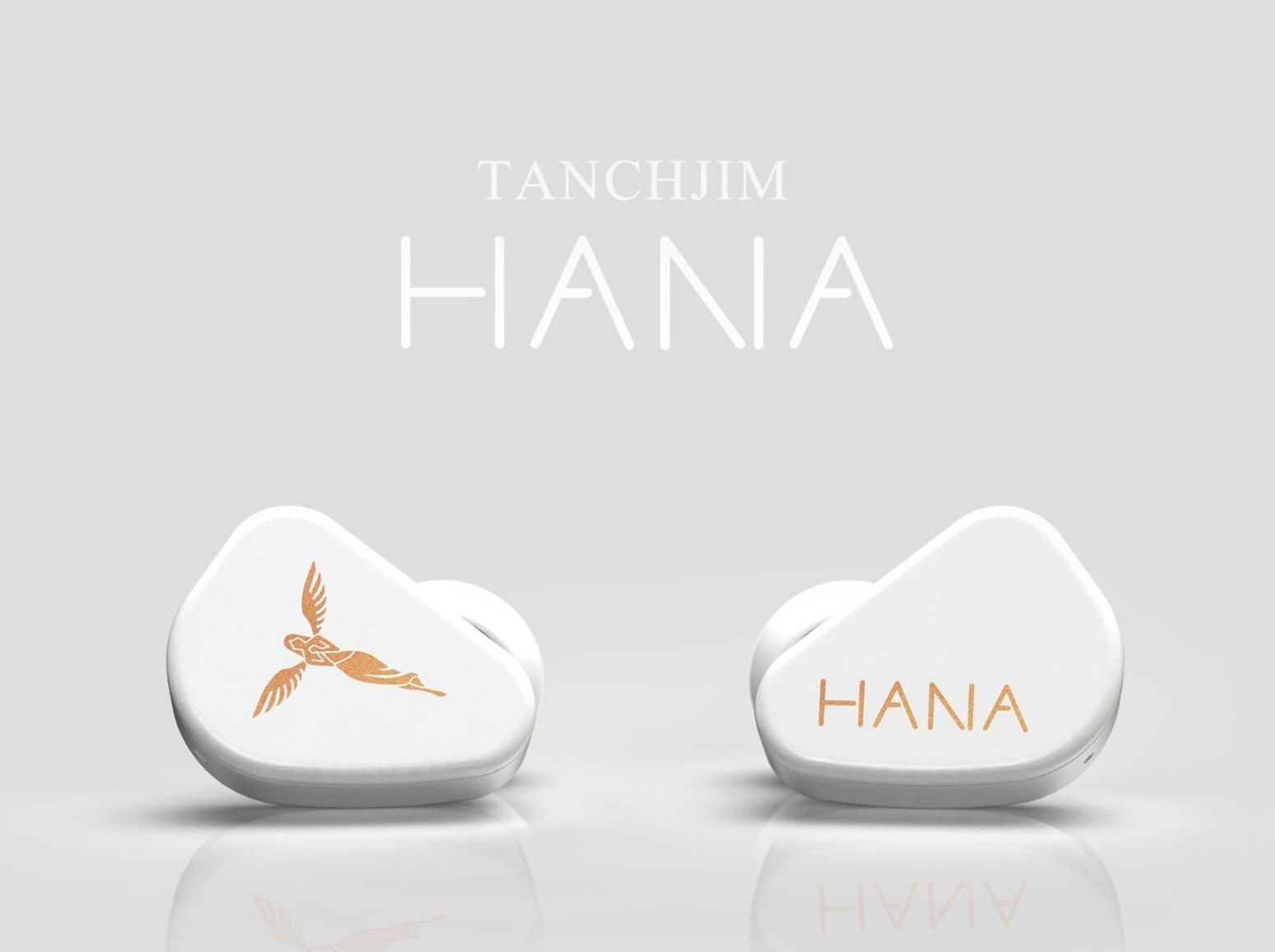 Tanchjim Hana Latest Stainless Steel Earphones Released