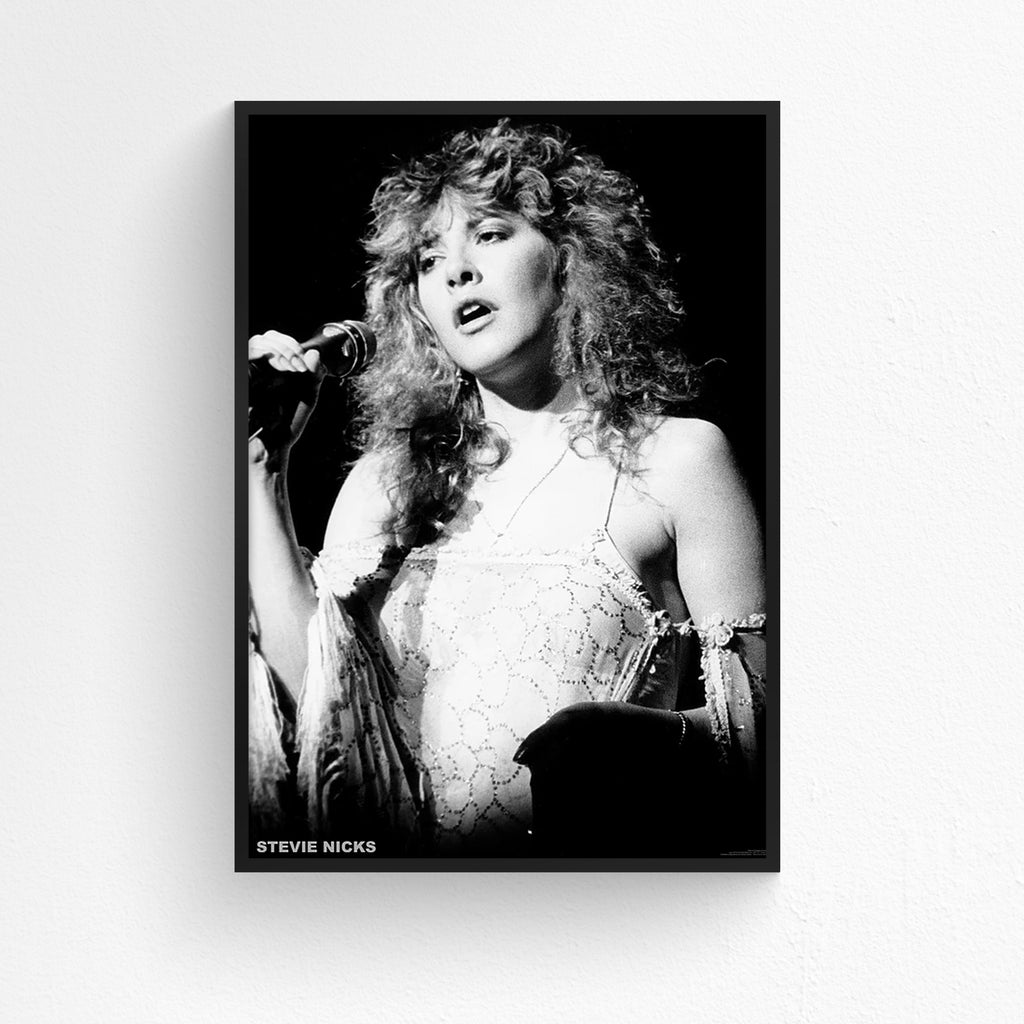 Stevie Nicks - Rumours Tour