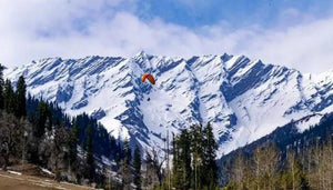 Manali 5 Night 6 Days with Aryan Dream Holidays