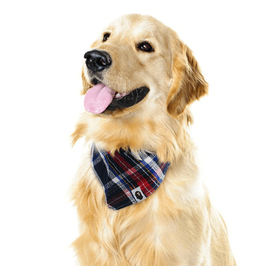 Dog Plaided Scarf Bandana