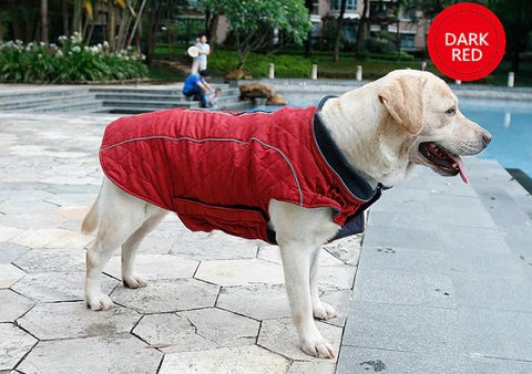 Dog Coats, Jumpers & Apparel - Quilted Dog Coat Water Repellent Winter Jacket