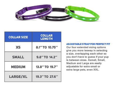 Dog Collars Leads & Harnesses - Flashing Glow Dog Led Collar