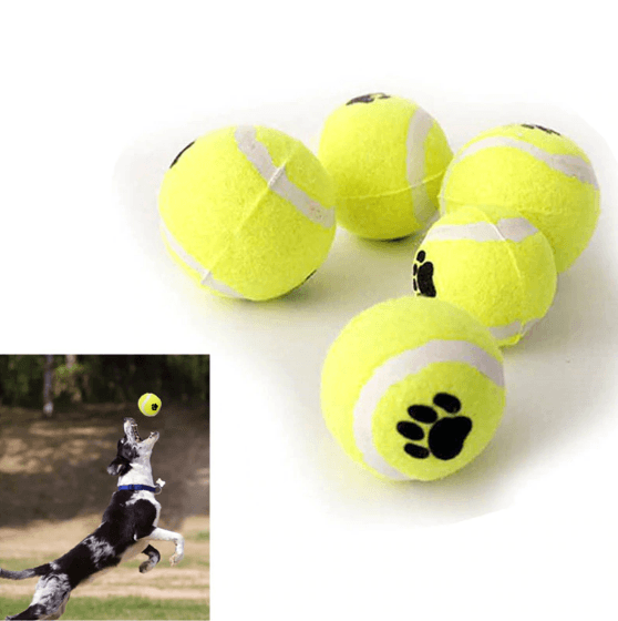 Dog Toys - Dog Tennis Ball Bite Toy