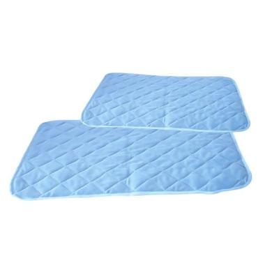 Dog Accessories And Supplies | Dogwarehouse - Affordable Products | Dog Clean Up | Dog Mat Pad Bed