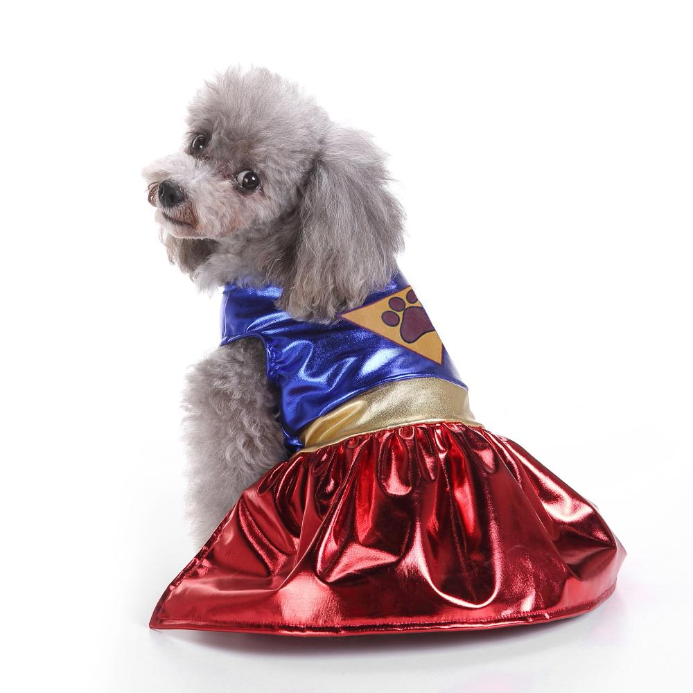 Winter Halloween Super Dog Costume