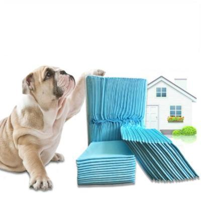 Dog Accessories And Supplies | Dogwarehouse - Affordable Products | Dog Clean Up | Dog Training Pads | Dog Pee Pads