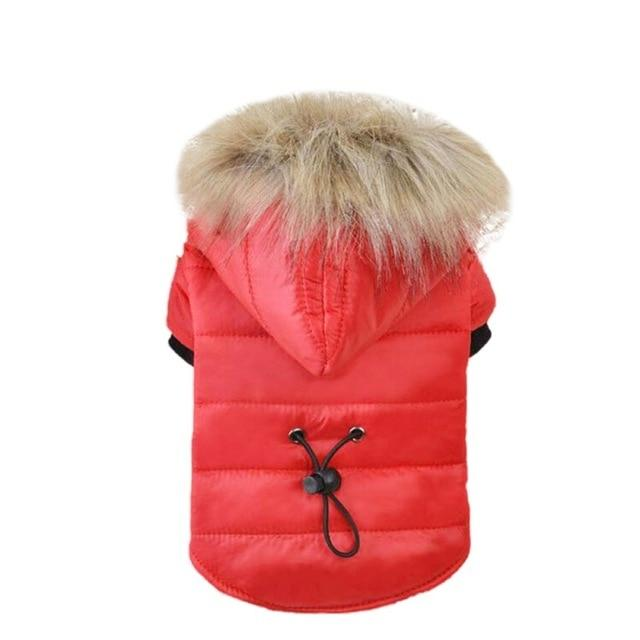 Dog Accessories And Supplies | Dogwarehouse - Affordable Products | Dog Coat,Jumper,Apparel | Dog Winter Jacket