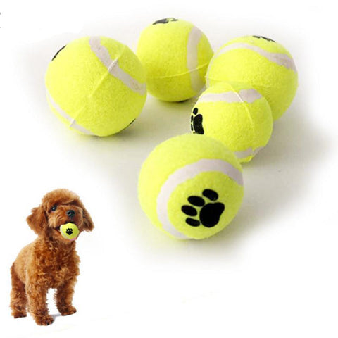 Dog Tennis Ball Bite Toy