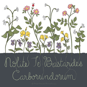 Printable Artwork: Nolite Te Bastardes Carborundorum