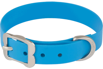 Red Dingo Vivid PVC Dog Collar -Blue