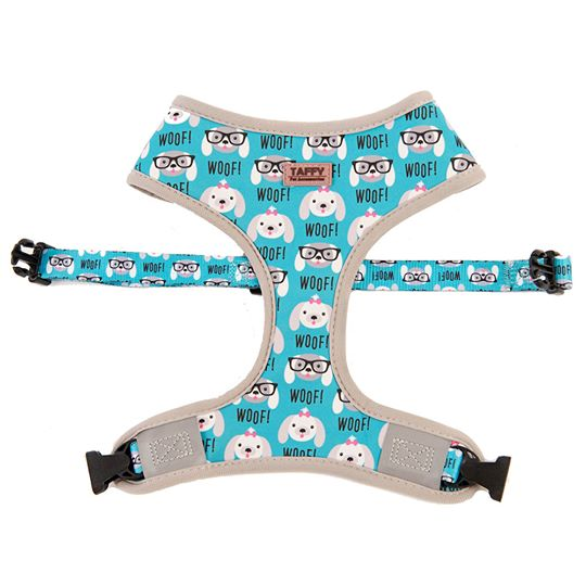 Taffy 2-in-1 Harness silva-5-pets Taffy Pet Accessories