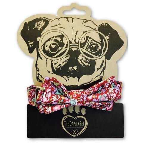 The Dapper Pet Spring Bow Tie Collar