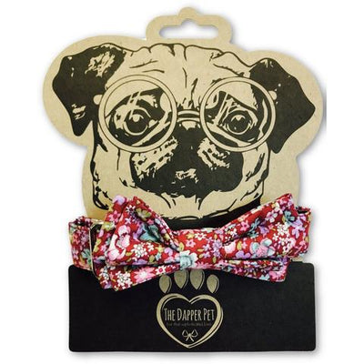 The Dapper Pet Spring Bow Tie Dog Collar