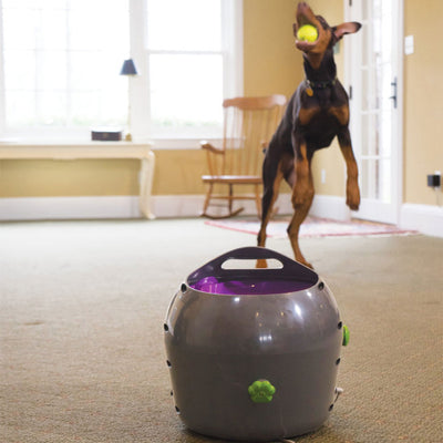 Automatic Ball Launcher Dog Toy -DEMO MODEL ( USED )