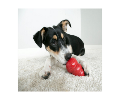 Kong Classic Dog Treat Toy - Red