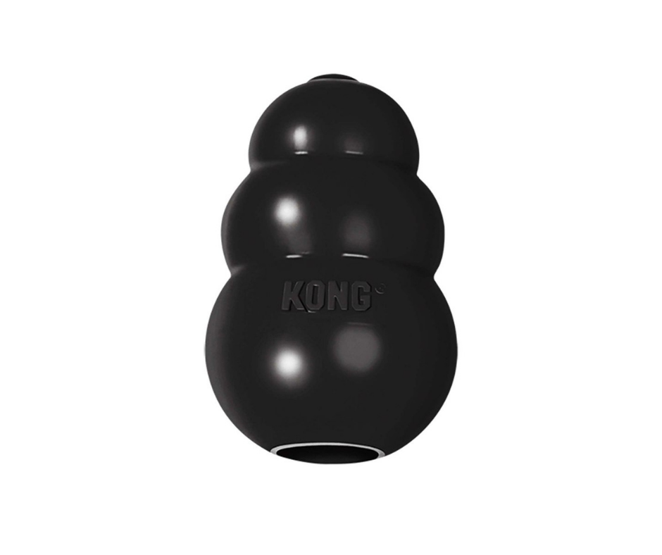 Kong Extreme Treat Dog Toy - Black