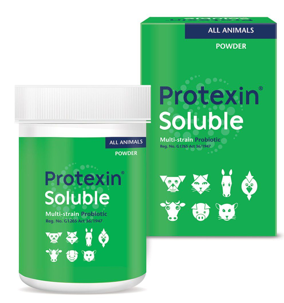 Protexin Soluble Powder - 60 mg