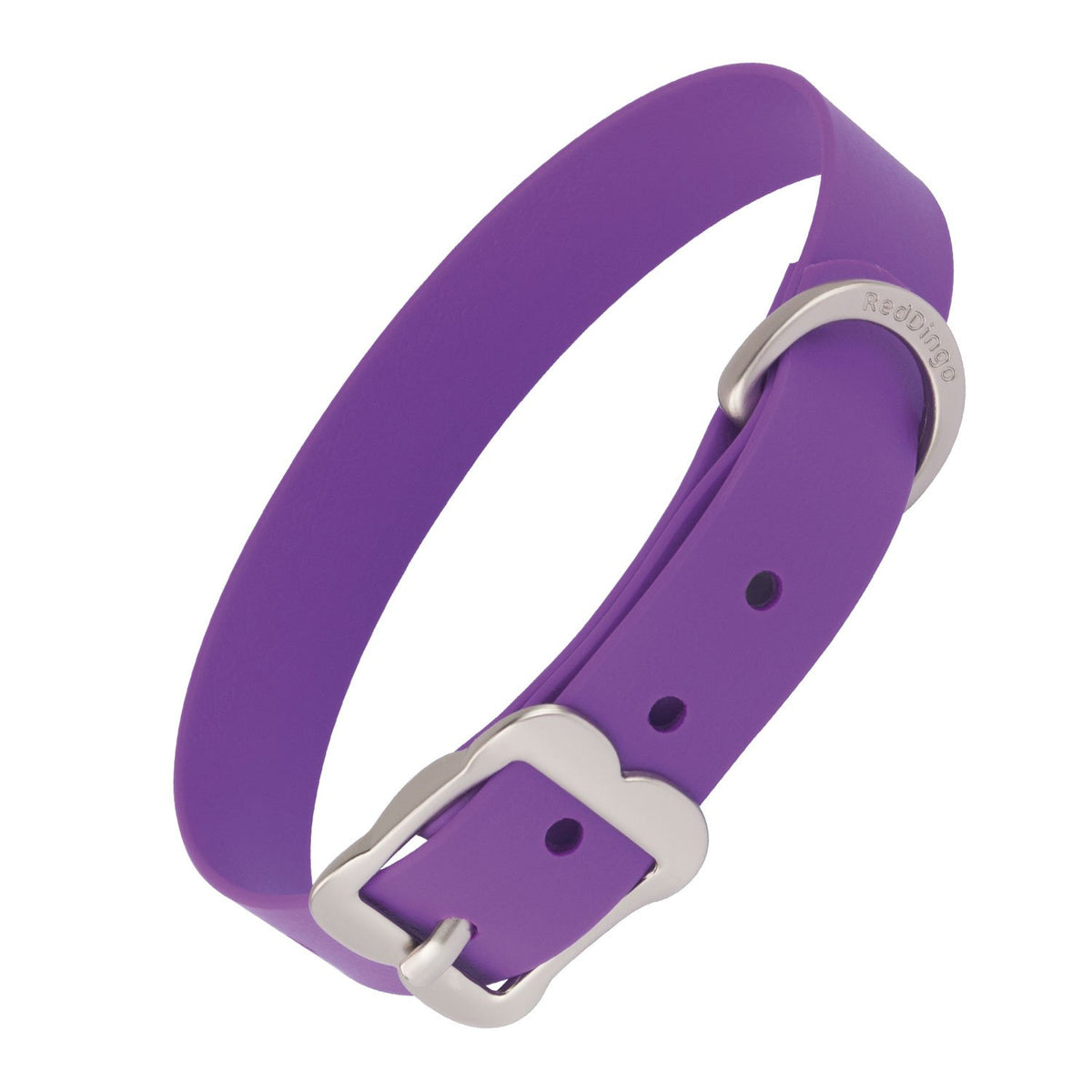 Red Dingo Vivid PVC Dog Collar - Purple