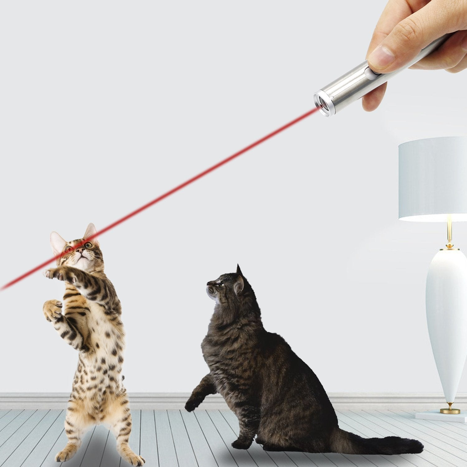Cat Catch Interactive Light Toy