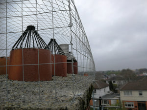 Ecologica Seagull Cage for Proofing Chimneys