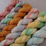 Mini skein set 2
