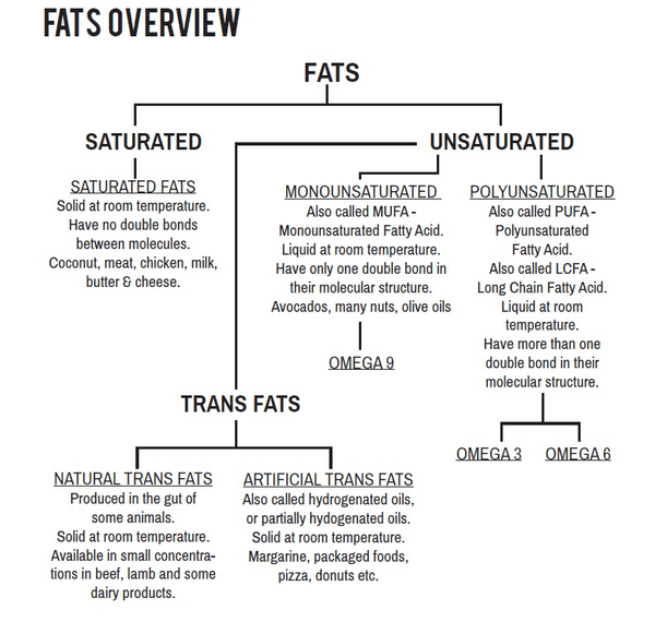Fats overview